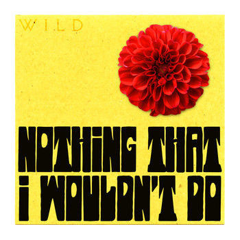 Wild - Nothing That I Wouldn't Do