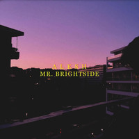 Alesh - Mr. Brightside