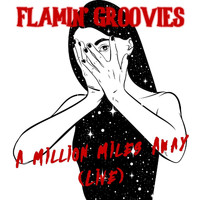 Flamin' Groovies - Million Miles Away (Live)