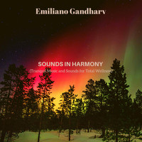 Emiliano Gandharv - Sounds in Harmony (Tranquil Music and Sounds for Total Wellness)