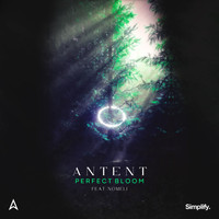 Antent - Perfect Bloom (feat. Nomeli)