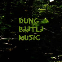 Dung Beetle Music - What Have We Done