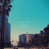 Leaking Shell - Drifting