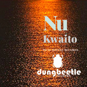 Various Artists - Nu-Kwaito