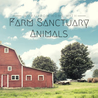 Relaxing ASMR - Work from Home with Farm Sanctuary Animals