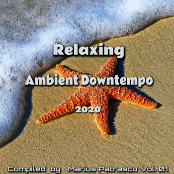 Various Artists - Relaxing Ambient Downtempo 2020, Vol, 01