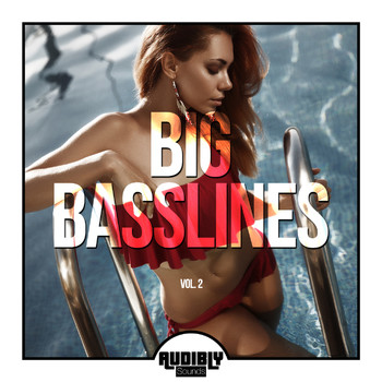 Various Artists - Big Basslines, Vol. 2