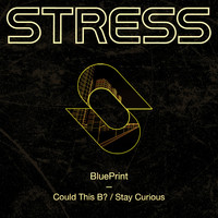 Blueprint - Could This B? / Stay Curious