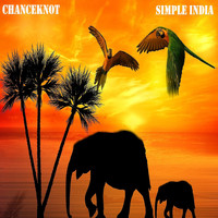 CHANCEKNOT / - Simple India