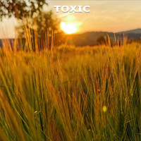 Toxic - Sunset