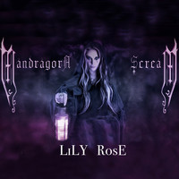MANDRAGORA SCREAM - Lily Rose