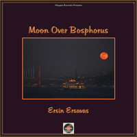 Ersin Ersavas - Moon over Bosphorus