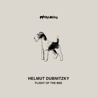 Helmut Dubnitzky - Flight of the Bee