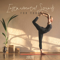 Healing Yoga Meditation Music Consort - Instrumental Sounds for Yoga 2020 (Natural Space of Spirituality, Daily and Class Yoga)