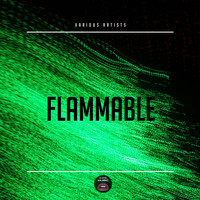 Various Artists - Flammable
