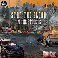 Big Caz - Stop the blood in the streets (Explicit)