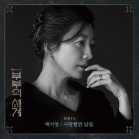 Baek Ji Young - The World of the Married, Pt.6 (Original Television SoundTrack)