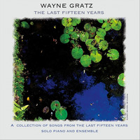 Wayne Gratz - The Last Fifteen Years