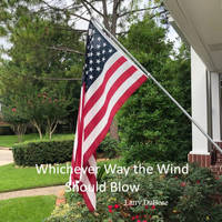 Larry Dubose - Whichever Way the Wind Should Blow