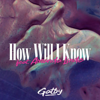 Gatby feat. Amanda Linde - How Will I Know