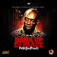 Ninjaman - Dark up di place