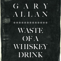 Gary Allan - Waste Of A Whiskey Drink