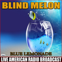 Blind Melon - Blue Lemonade (Live)