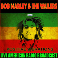 Bob Marley & The Wailers - Positive Vibrations (Live)