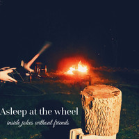 Asleep At The Wheel - Inside Jokes Without Friends