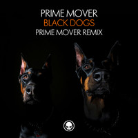 Prime Mover - Black Dogs (Prime Mover Remix)