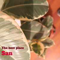San - The Best Place