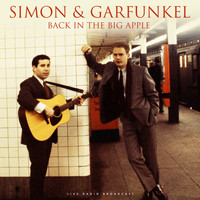 Simon & Garfunkel - Back in the Big Apple (live)