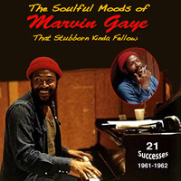 Marvin Gaye - The Soulful Moods of Marvin Gaye That Stubborn Kinda Fellow