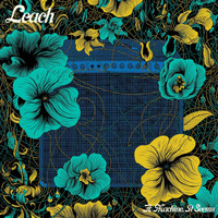 Leach - A Machine, It Seems