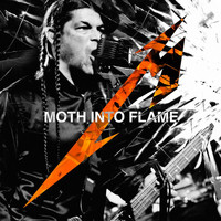 Metallica - Moth Into Flame (Live)