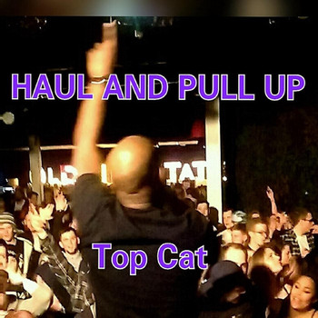 Top Cat - Haul and Pull Up
