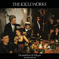 The Icicle Works - The Small Price of a Bicycle (Expanded Edition)