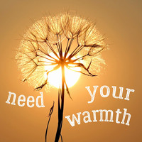 Richard Davies - Need Your Warmth
