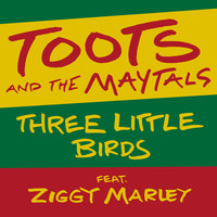 Toots And The Maytals - Three Little Birds (feat. Ziggy Marley)