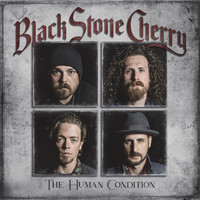 Black Stone Cherry - Again