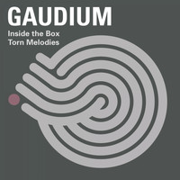 Gaudium - Torn Melodies