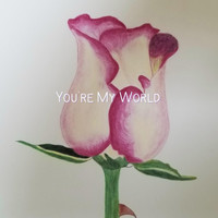 Anonymous - You're My World