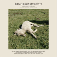 Various Artists / - Breathing Instruments