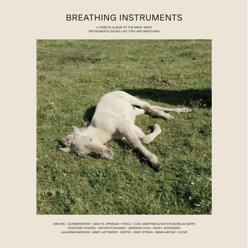 Breathing Instruments