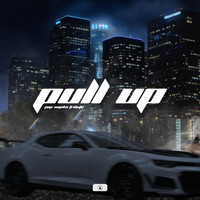 Ash - PULL UP