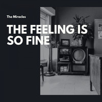 The Miracles - The Feeling Is So Fine