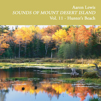 Aaron Lewis - Sounds of Mount Desert Island, Vol. 11: Hunters Beach