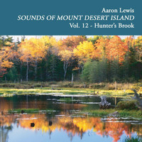 Aaron Lewis - Sounds of Mount Desert Island, Vol. 12: Hunters Brook