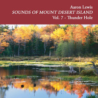 Aaron Lewis - Sounds of Mount Desert Island, Vol. 7: Thunder Hole