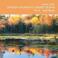 Aaron Lewis - Sounds of Mount Desert Island, Vol. 8: Sand Beach